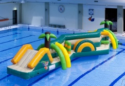 wholesale Double Jungle Inflatable Pool Run Game suppliers