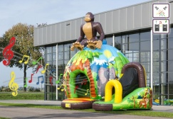 wholesale Inflatable Disco Jungle Bounce Slide suppliers