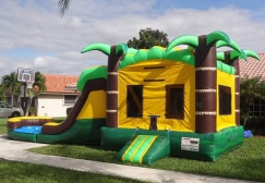 wholesale Inflatable Tropical Rush Combo suppliers