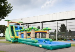 wholesale Jungle waterslide with pool suppliers