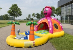wholesale Inflatable Seaworld Octopus Playzone suppliers