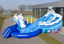 wholesale Inflatable Tropical Dolphin Elephant Water Park suppliers