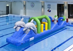 wholesale Double Dolphin Aqua Run Pool Inflatables suppliers