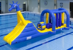 wholesale Seahorse Anemone Inflatable Aqua Run Game suppliers