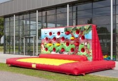 wholesale Inflatabke Boxing Wall suppliers
