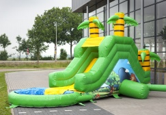 Garden Jungle Inflatable Water Slide Suppliers