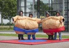 wholesale Twins Sumo Wrestling Suit suppliers
